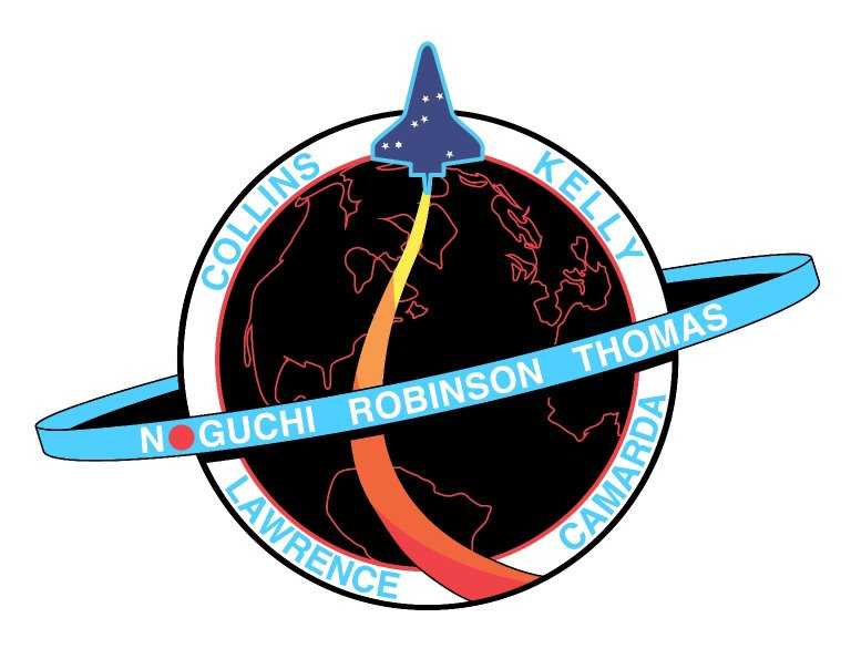 STS-114 insignia