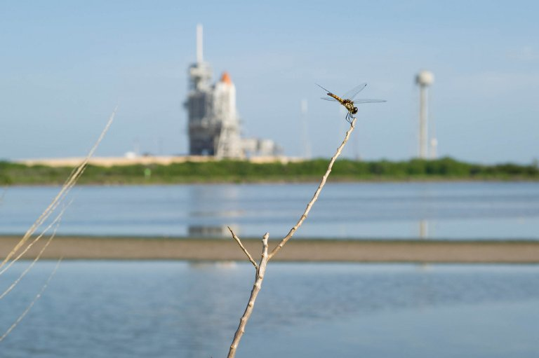 STS-135 Launch Countdown (201107060001HQ)