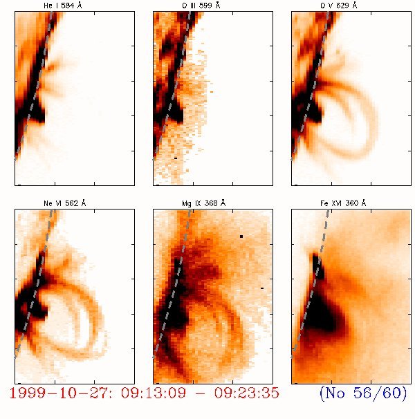 Huge magnetic loops extending tens of thousands of km into space trapping hot gases inside them. We have seen such loop systems develop into extremely complex so-called 'active regions' where loops clash and twist like elastic bands before some kind of break down results in the ejection of clouds or streams of particles into space. The images show CDS' unique ability to map such regions. The coolest gases (20,000 degrees) are shown in the top left image, and the hottest (2 million degrees) in the bottom right. The edge of the Sun is seen on the left of each image and different gases show different loops giving a spectacular display above the surface of the Sun.