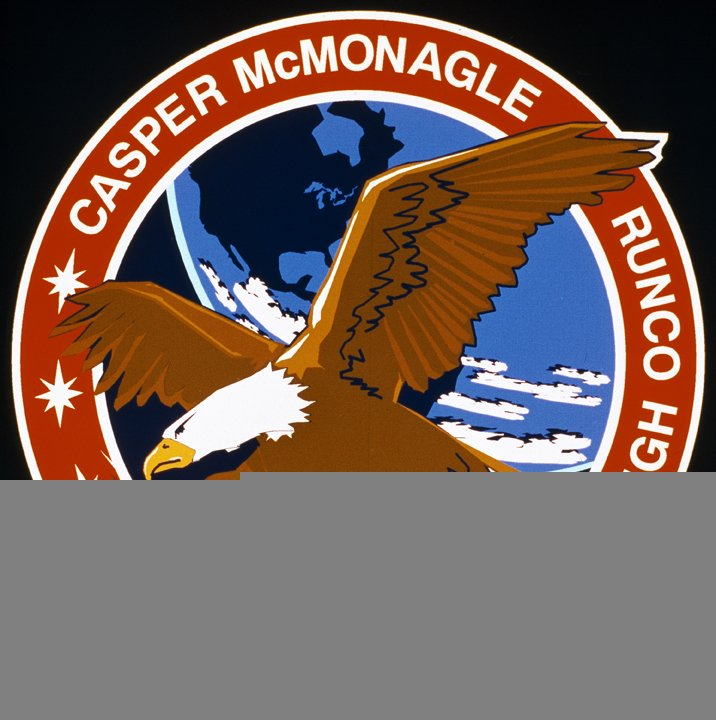 STS-54 Mission Insignia