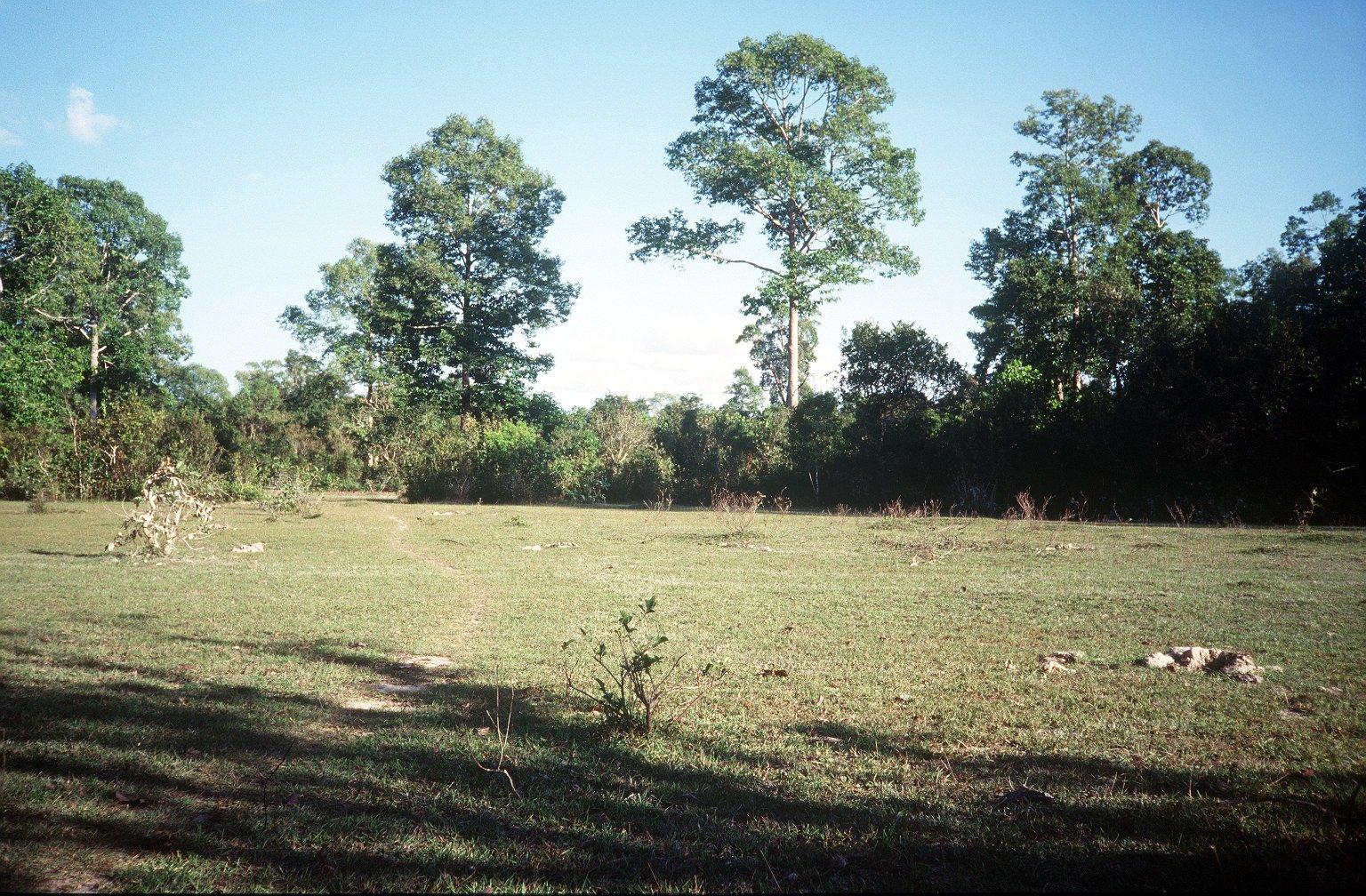 Kapilapura mound