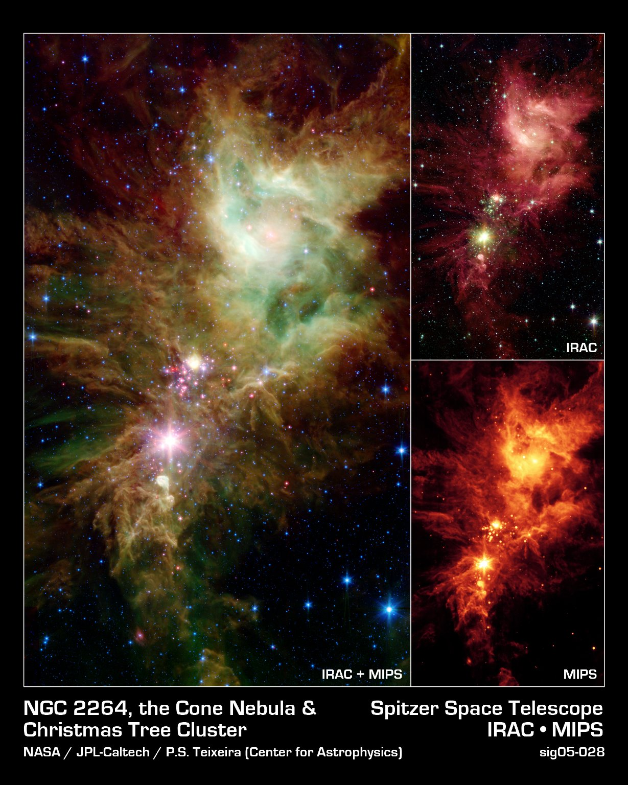 The Snowflake Cluster versus the Cone Nebula