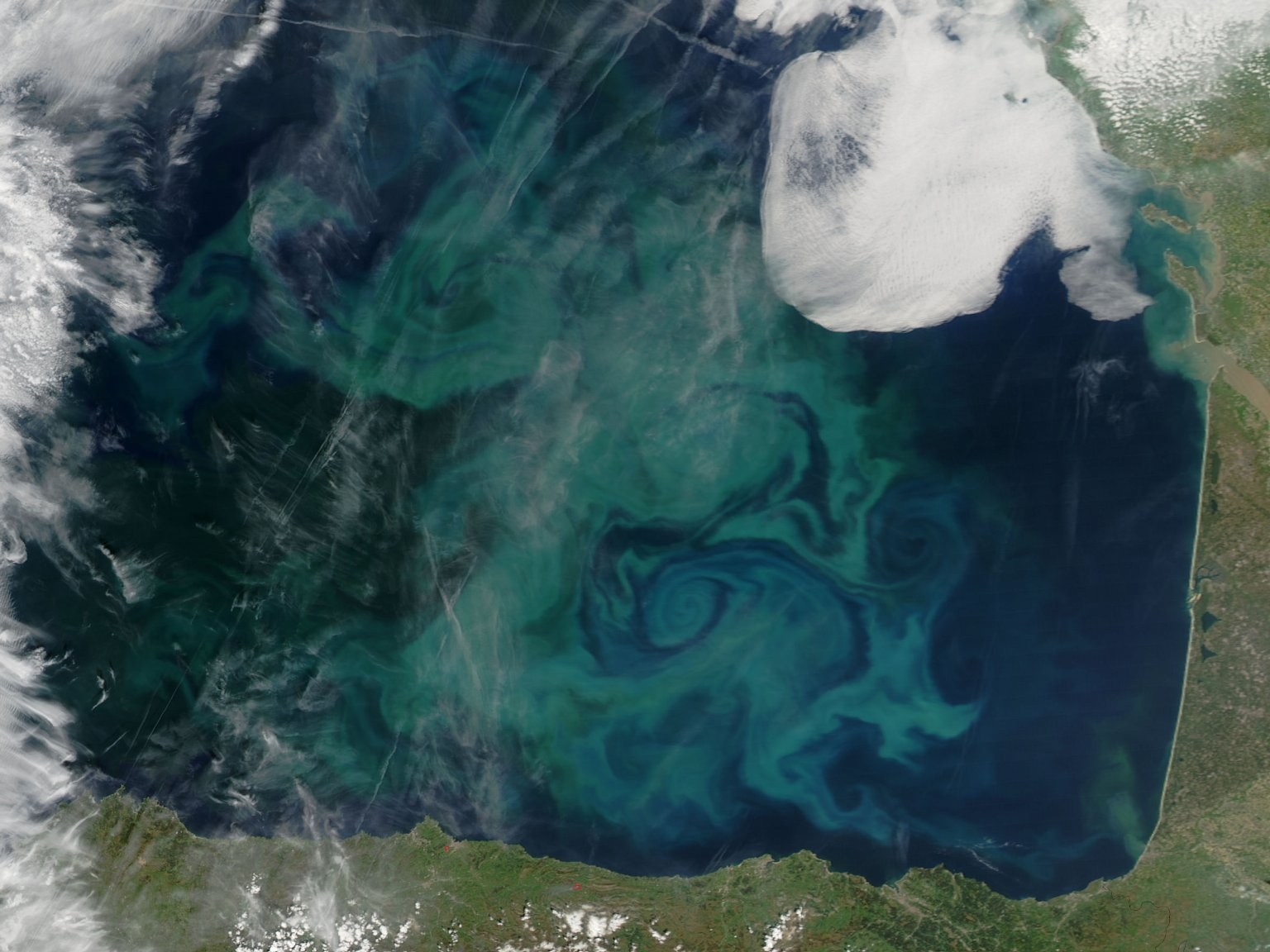 Spring Color in the Bay of Biscay