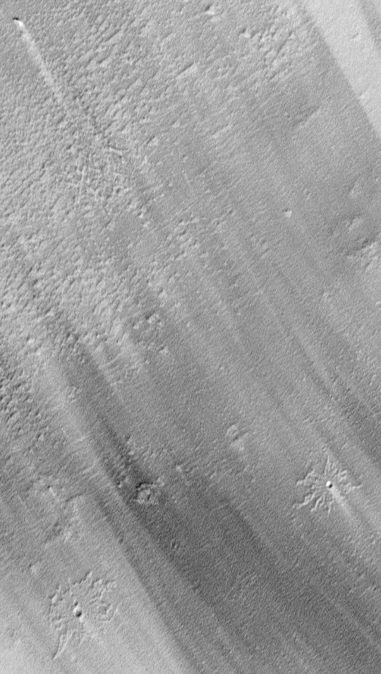 Pedestal Craters and Wind Streaks, South Medusae Fossae