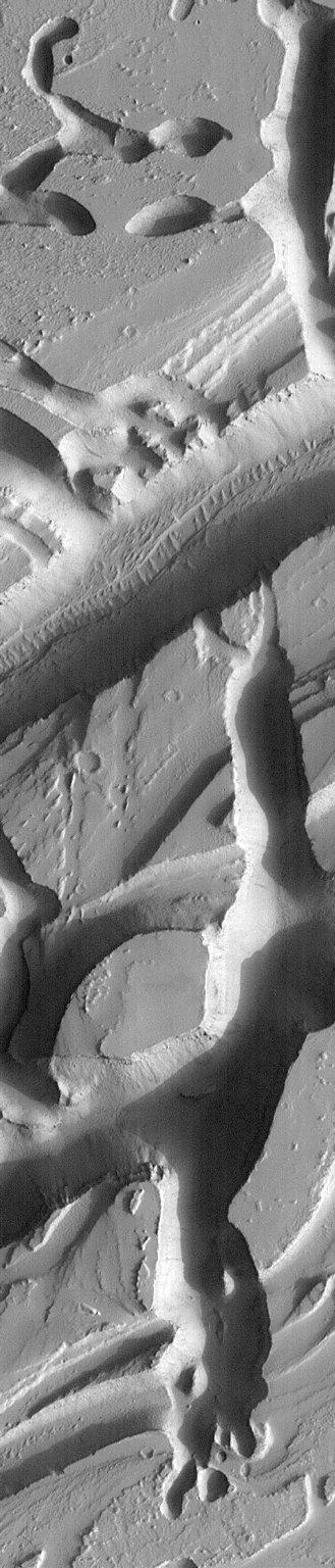 Martian Variety Exhibited by the Olympica Fossae